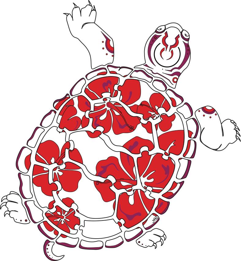 CompSciConnect turtle logo